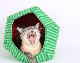 Pet bed that looks like a watermelon, ball shaped pet bed, Green Watermelon Rind, fruit pet bed, the Cat Ball cat bed