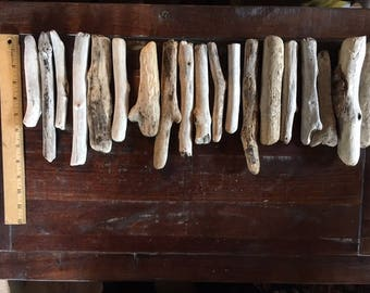"Bundle of 19 wonderful driftwood pieces, each between 6-8"" long"
