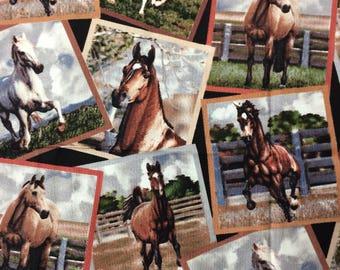 Horse snapshots cotton fabric