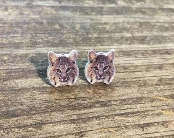 Bobcat earrings jewelry wild cat feline wildlife