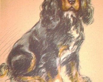 SALE Spaniel Tantivy VINTAGE SIGNED Mounted 1946 Lucy Dawson Mac dog plate print Unique gift
