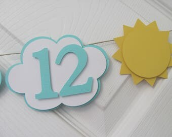 Photo Banner first year banner, 12 month banner, photo banner, You are my sunshine birthday decorations