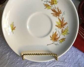 Taylor Smith Taylor Taylorton Rust/Yellow Leaves Autumn Slendor-John Giluss Design-Cup Saucer/Plate/Dish
