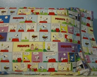 PEANUTS/Pillowcase