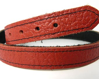 Red leather buckle collar