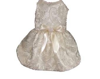 Dog Wedding Dress, Ivory and Bridal Lace
