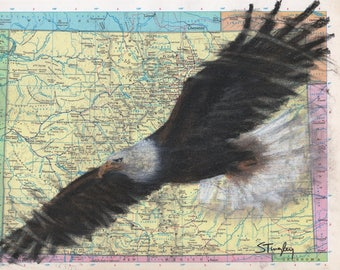 Custom Bird Drawing Bald Eagle on Map