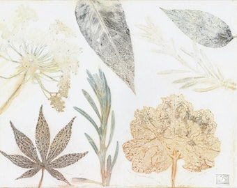 Original monoprint | Botanical fine art print | Print making | Garden leaves and flowers | One of a kind | Monotype print