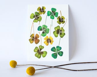 Postcard with flowers, illustration made with acrylic paint, postcard, paper, flowers, nature
