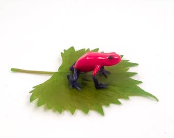 Blue-jeans Frog or Strawberry Poison-dart Frog (Dendrobates pumilio)