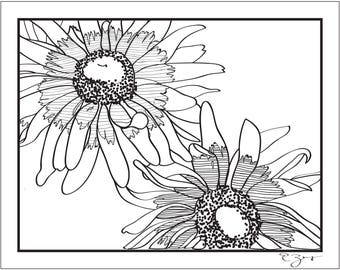 daisy sketch contour drawing: 8.5x11 art print