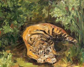 "Chelsea - Summatran Tiger at Zoo Atlanta, 8"" x 10"", oil on panel"