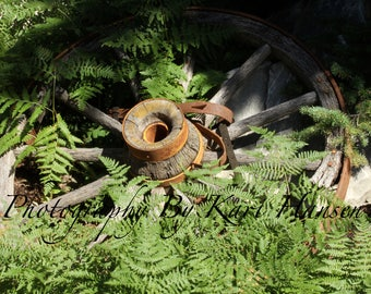 Antique Wagon Wheel Tranquil Garden Fine Art Photography Rustic Primitive Wall Art