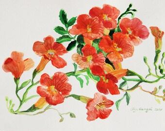 Original Watercolor painting art nursery art classical painting 12 x 9 in chrysanthemum bright colors botanical illustration Art