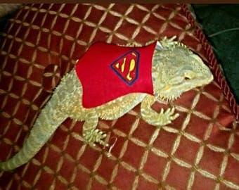 Lil' Bestie Bearded Dragon Superman Cape