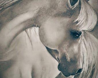 "Horse print, 11""x 14"""