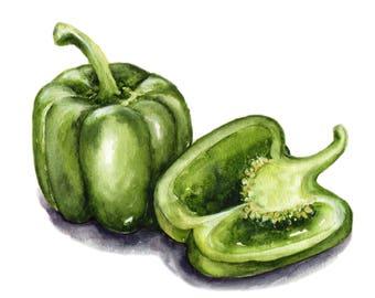 fresh bell pepper watercolor print
