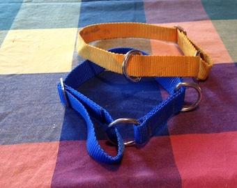 Circle Dog Collars