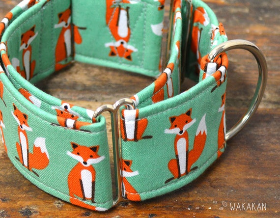 Martingale dog collar model Fancy Fox Turquoise. Adjustable and handmade with 100% cotton fabric. Beautiful foxes. Wakakan