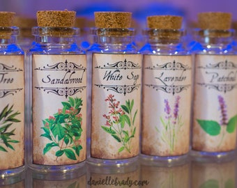 Set of 18 Essential Oil and Dried Herb Apothecary Bottles