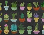 Chalkboard Cacti and Succulents PNG Clipart, chalk Cactus Clip Art digital Instant Download Scrapbook Embellishments