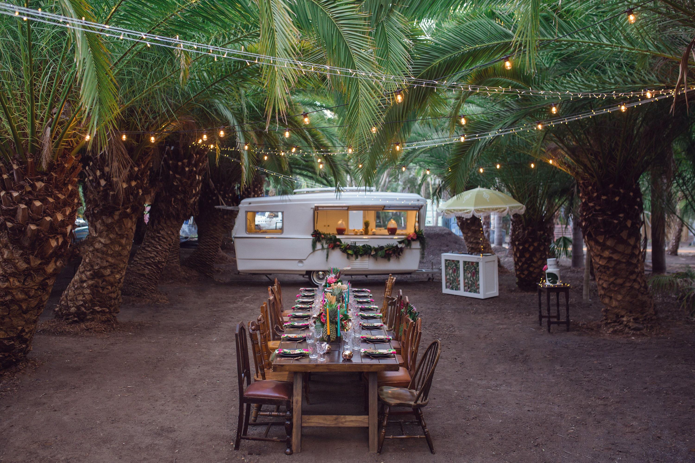 Tropical Palm tree farm wedding