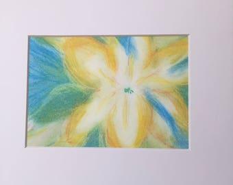 Yellow lily burst