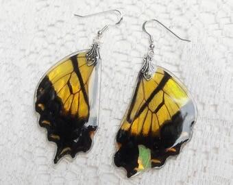 Yellow Butterfly Earrings - Fairy Accessories - Butterfly Jewelry - Dangle Earrings - Fairy Jewelry - Dandelion Dream