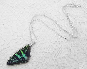 Moth Wing Necklace - Real Sunset Moth - Colorful Jewelry - Real Moth Wing Jewelry - Best Friend Gift