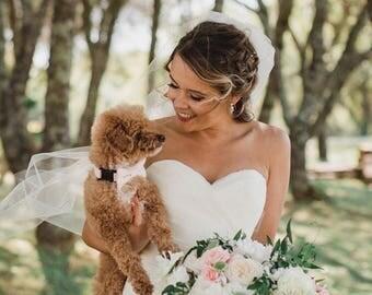 Blush/Petal Dog Bow Tie Sent 1-3 business days after you order