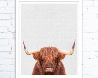 Highland Cow Art print, Animal Print,Highland Cow, Animal art, Animal decor, Animals art, Baby animals, Nursery animal wall art, Kids art