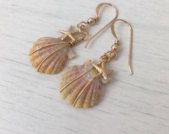 Sunrise Shell and Tiny Starfish Earrings