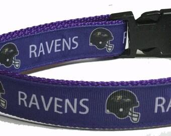 Dog Collar, Baltimore Ravens