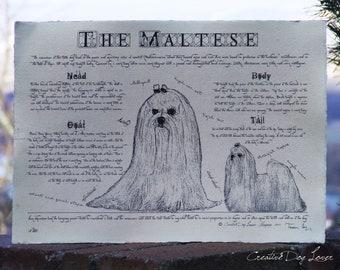 Antique styled dog standard - Maltese