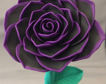 Beauty and the Beast Rose, black rose with purple edges, rose in a glass dome, black rose, purple rose, engagement, wedding
