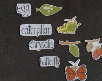 Butterfly Life Cycle Felt Set // Flannel Board // Cognitive Learning //  Science // Nature