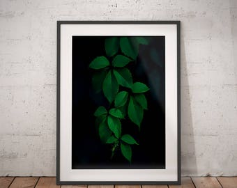 Botanical Leaf Art | Palm Leaf Print, Palm Leaf Printable, Nature Wall Art, Nature Poster, Leaf Painting Print, Leaf Paint Print