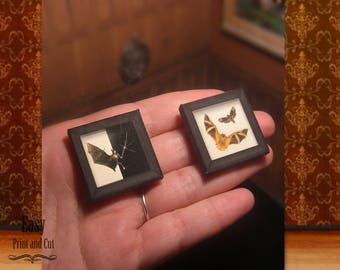 MINIATURE  framed taxidermy . two side bat and bat with death's head hawkmoth. Doll decoration. oddities . video tutorial . DOWNLOAD 1:12 th