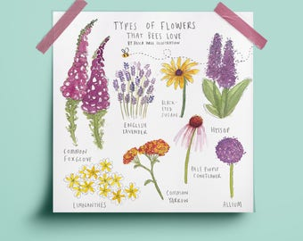 Types of Flowers that Bees Love Print