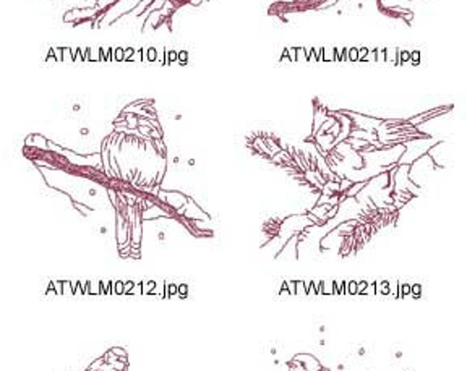 Winter-Birds-Redwork ( 10 Machine Embroidery Designs from ATW ) XYZ17F