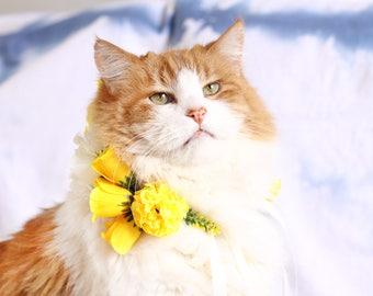 Yellow Pet Flower Crown | Floral Dog Collar | Yellow Bridal Crown | Yellow Rose Crown | Dog Halo | Dog Flower Collar | Dog Boho Wedding