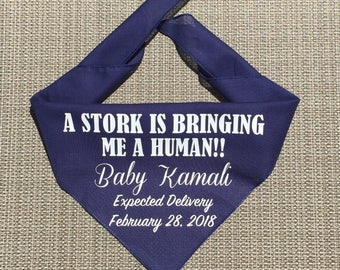 Dog Pregnancy Announcement Bandana, A Stork Is Bringin Me A Human Pregnancy Announcement, Personalized Pregnancy Announcement