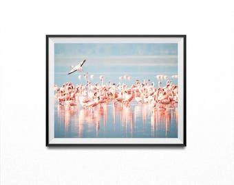 Flamingo Print, Pink Print, flamingo art, flamingo, pink flamingo, fashion print, romantic print, bird print, flamingo download,