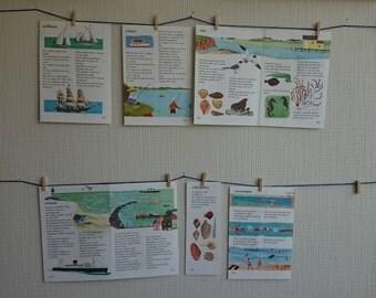 Illustrations sea, beach, water, water fun, water sports, swimming, visser-decoration VINTAGE