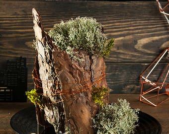 Rustic Art Decor Christmas Primitive Country Home Decor Wedding Table  Decoration Pine Bark, Reindeer Moss