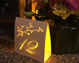 Romantic Rustic Table Number Luminaries
