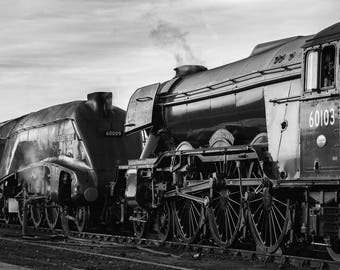 Union of South Africa and Flying Scotsman A4 Print