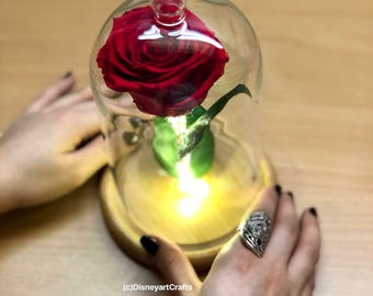 Beauty and the beast rose, Enchanted Rose,Rose, Rose in glass dome, Forever rose, Rose in Glass, preserved rose, Forever red rose,Belle rose