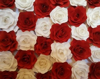 Red and white rose wall