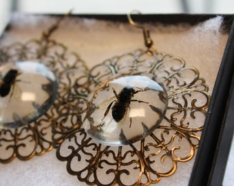 Honey Bee Chandelier Earrings